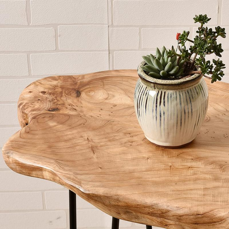Natural End Wood Plant Stand